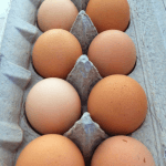 Pastured, unwashed eggs from Da-Le Ranch