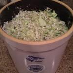 A huge batch (3x recipe) fills a three gallon crock!